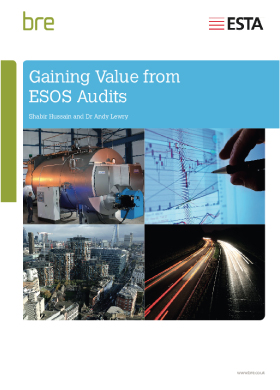 Gaining Value from ESOS Audits