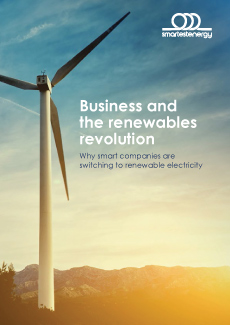Business The Renewables Revolution