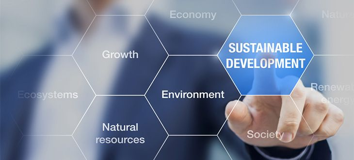 how to easily achieve supply chain sustainability feature image